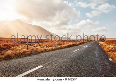An empty road in the sun - Stock Photo