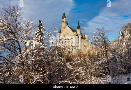 Neuschwanstein Castle in winter landscape. Germany, Bavaria. - Stock Photo