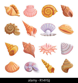 Sea shell beach icons set. Cartoon illustration of 16 Sea shell beach tropical underwater vector icons for web - Stock Photo