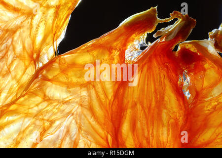 Dry blood orange slice closeup back litted with a dark background. - Stock Photo