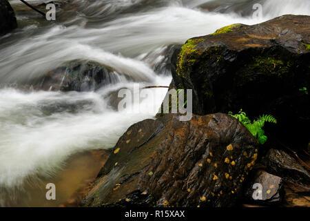 Outflow rapids below Latourelle Falls, Columbia Gorge National Scenic Area, Oregon, USA, - Stock Photo