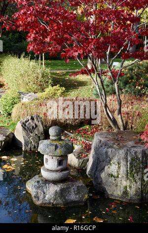 London, UK. 9th Nov, 2018. UK Weather Sunny Intervals in London, Japanese Kyoto Garden, Holland Park, Kensington,London.UK Credit: michael melia/Alamy Live News - Stock Photo