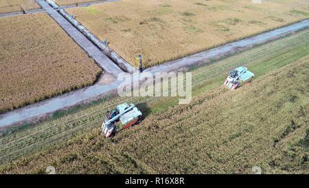 Huai'an. 10th Nov, 2018. Aerial photo taken on Nov. 10, 2018 shows farmers harvest rice in Sanhe Town of Hongze District in Huai'an, east China's Jiangsu Province. Credit: Zhang Jian/Xinhua/Alamy Live News - Stock Photo