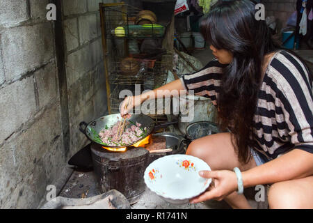 Thai woman crouching down preparing a traditional meal cooking meat in a wok over an open fire over a wood stove - Stock Photo