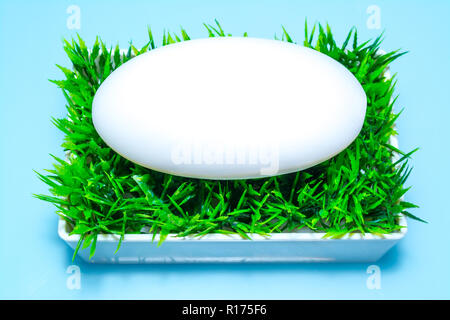 Soap in the soap box on the green grass on a sky blue background. Top view. - Stock Photo