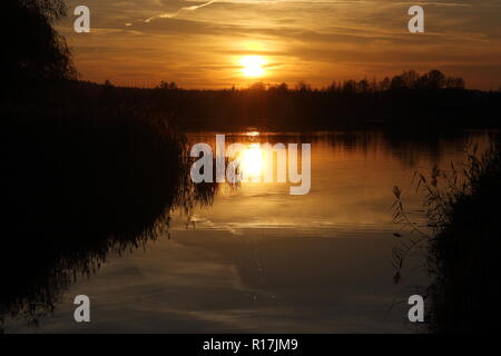 Dramatic sunset over a lake and a stream flowing into it. Orange sunlight reflecting on water surface, deep shadows of forest and and water plants. - Stock Photo