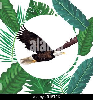 wild eagle cartoon round icon over leaves foliage background vector illustration graphic design - Stock Photo