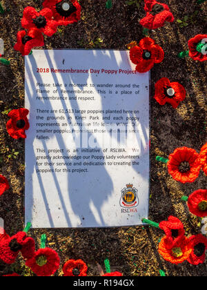 2018 Remembrance Day Poppy Project display of handcrafted poppies in Kings Park Perth Western Australia