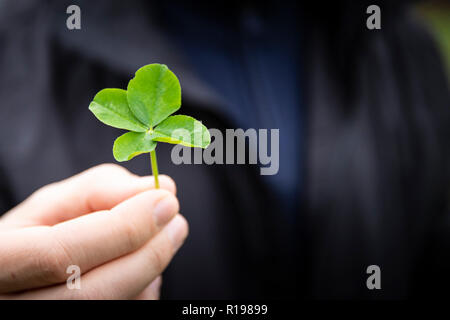 Close up of a hand holding a four-leaf clover, focus on the clover and blurred dark background. Good luck symbol with copy space. - Stock Photo
