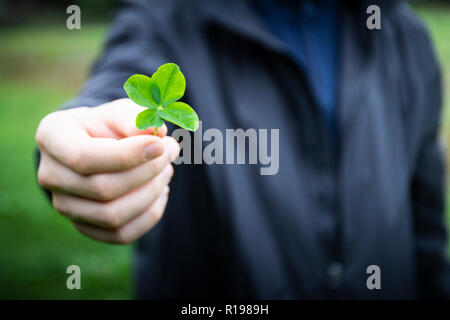 Close up of a hand holding a four-leaf clover, focus on the clover and blurred person in the background. Good luck symbol with copy space. - Stock Photo