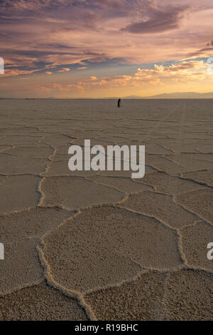 Car tire tracks lead into the sunset with a person on the Salt Flats of Utah - Stock Photo