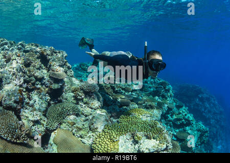 Snorkeling the pristine reefs on the remote Island of Alofi in The French Territory of Wallis and Futuna Islands. - Stock Photo