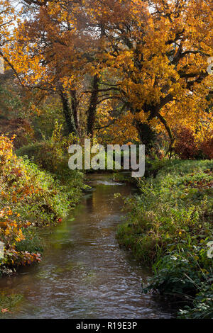River Wey in autumn feeds the former watermill at Elstead, Surrey, England - Stock Photo