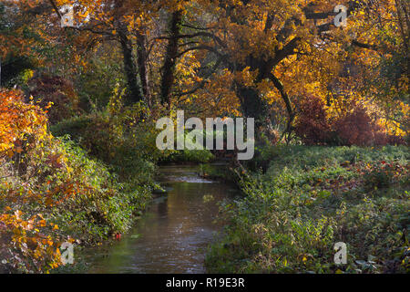 River Wey in autumn feeds the stream to the former watermill at Elstead, Surrey, England - Stock Photo