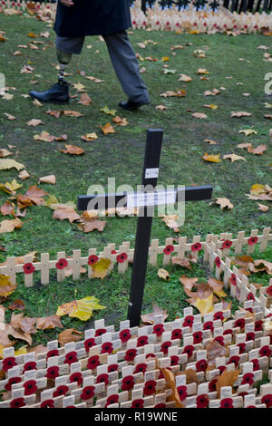 London,UK.10th November 2018.Injured veteran serviceman with colleagues by the field of red poppies from the British Legion outside Westminster Abbey commemorating the 100th anniversary Armistice at the end of the First World War. London, England,UK.Credit:  Julio Etchart/Alamy Live News - Stock Photo