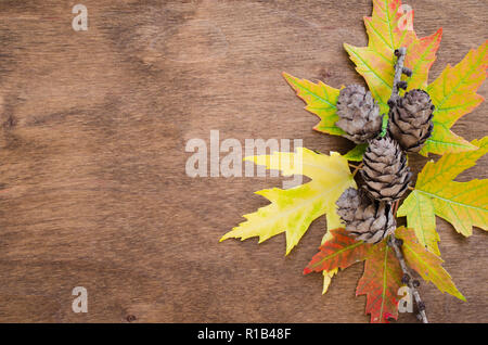 Autumn colored leaves and cones over old wooden background with copy space. Copy place for inscription, top view, tablet for text. - Stock Photo