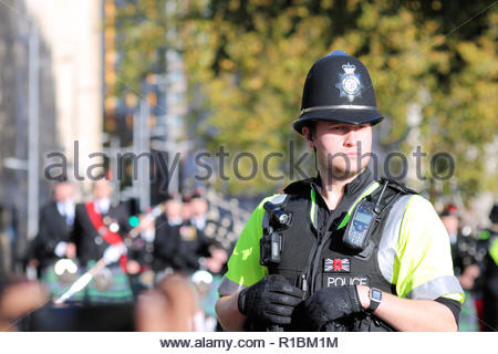Bristol City Centre, UK. 11th November 2018. Members of the armed forces, emergency services and civic groups come together to take part in the yearly commemeration of all those fallen in past wars at the Cenotaph in Bristol City Centre whilst large crowds line the route. Credit: Joseph Landers/Alamy Live News - Stock Photo