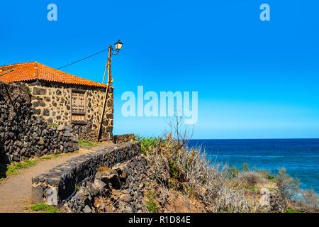 On the cliffs I found this wild papaya - Las Aguas, San Juan de la Rambla - Stock Photo