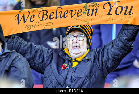 London, UK. 11th Nov 2018. A dedicated Wolverhampton Wanderers supporter during the Premier League match between Arsenal and Wolverhampton Wanderers at the Emirates Stadium, London, England on 11 November 2018. Photo by Phil Hutchinson.  Editorial use only, license required for commercial use. No use in betting, games or a single club/league/player publications. Credit: UK Sports Pics Ltd/Alamy Live News - Stock Photo
