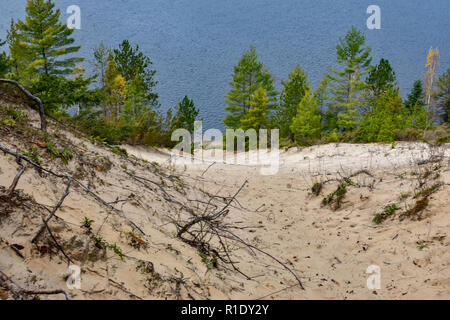 View from the top of a sand dune, with pine trees at the river/lake bank. Located in the Huron National Forest, Oscoda, Michigan. - Stock Photo
