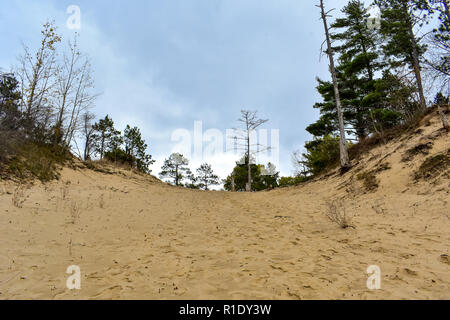 Sand dune in Huron National Forest.This was taken on a cloudy fall day here in Michigan.This scenic byway runs east towards Oscoda, with many vistas/ - Stock Photo
