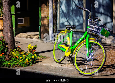A LimeBike, part of a bike-sharing service, is parked against a tree on Dauphin Street, Nov. 3, 2018, in Mobile, Alabama. - Stock Photo