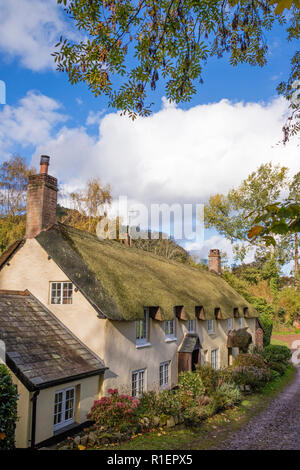 Thatched cottages in the picturesque village of Dunster, Somerset, England, UK - Stock Photo