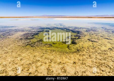 Amazing views of the salt lakes and salt flats inside Atacama Desert at San Pedro de Atacama in Chile altiplano inside the Andes. An infinity desert - Stock Photo