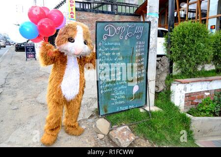 Guinea pig puppet- Restaurant in HUARAZ. Department of Ancash.PERU                     - Stock Photo