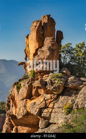 Taffoni rock, orange porphyritic granite rock, at Les Calanche de Piana, UNESCO World Heritage Site, near town of Piana, Corse-du-Sud, Corsica, France