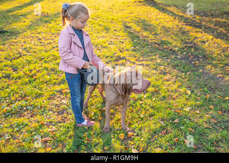 A beautiful cute girl hugs her dog sharpei breed. the dog is a devoted friend of the girl. Walking in park with dog.Sunny warm autumn day. Girl wearing a pink leather jacket.Copy space - Stock Photo