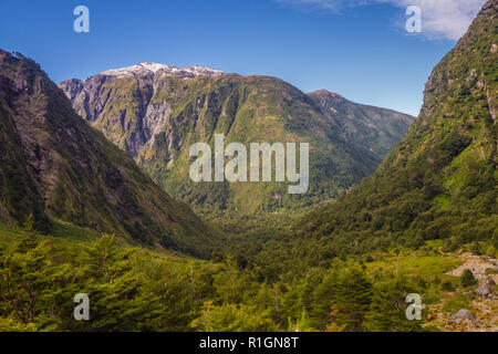 Enchanted Forest - Queulat National Park - Carretera Austral Chile, Patagonia - Stock Photo