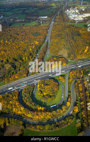 Aerial View, motorway junction Bottrop, A2 motorway, A31, Fries spit, fall foliage, autumn forest, natural, Bottrop, Ruhr, North Rhine-Westphalia, Ger - Stock Photo