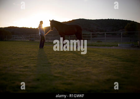 Young adult girl standing with a horse in a field. - Stock Photo