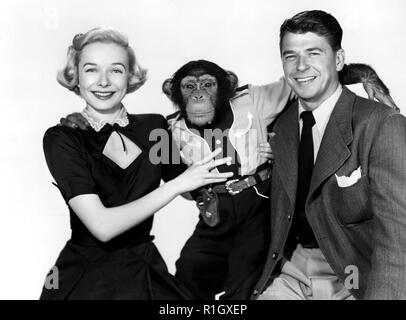 Ronald Reagan and his co stars in Bedtime for Bonzo. 1951 Credit: Hollywood Photo Archive / MediaPunch - Stock Photo