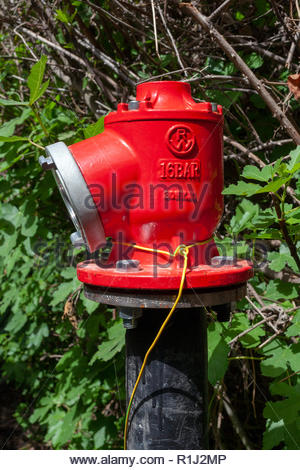 Industrial water supply, fire hydrant fitting, fire fighting equipment in a nature setting - Stock Photo
