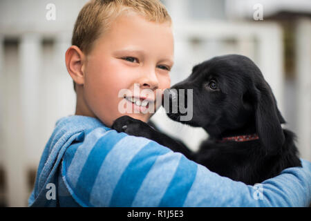 Curious labrador puppy affectionately sniffing his new owner. - Stock Photo