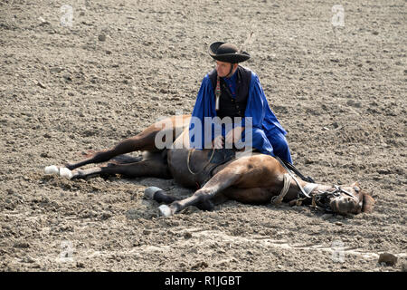 Equestrian show in the Puszta region of Hungary - Stock Photo