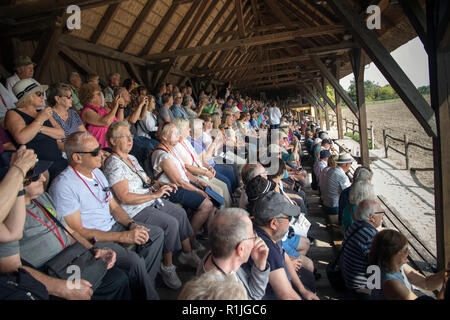 Tourists enjoying equestrian show in the Puszta region of Hungary - Stock Photo