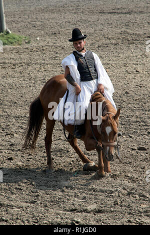 Cowboy at the Equestrian show in the region of Puszta in Hungary - Stock Photo