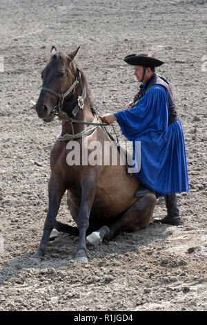 A cowboy demonstrates his equestrian skills at the Equestrian show in the Puszta region of Hungary - Stock Photo
