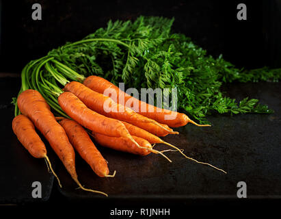 Bunch of fresh carrots with green leaves on  dark  background. - Stock Photo