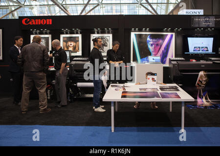 Toronto, CANADA - November 13, 2018: Profusion Expo 2018. For 8 years, ProFusion Expo is a premier event for Canada's imaging professionals. Photographers and videographers. Credit: Deyan Baric/Alamy Live News - Stock Photo