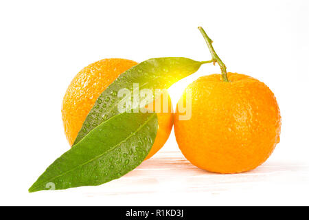 Tangerines with leaves and water drops on white wooden background, closeup with sunshine between the  both fruits and leaves - Stock Photo