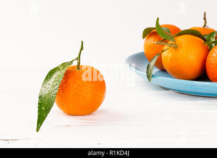 Tangerines on white wooden background with waterdrops an green leaves - Stock Photo
