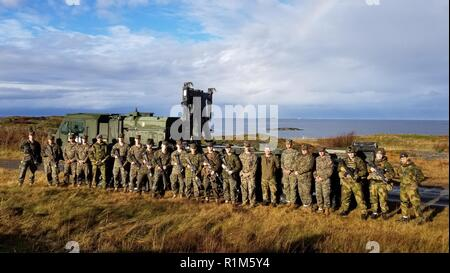 U.S. Marines assigned to Alpha Battery, 2nd Low Altitude Air Defense Battalion pose with members of the Norwegian Army during Exercise Trident Juncture 18, near Orland, Norway, Oct. 18, 2018. Trident Juncture 18 enhances the U.S. and NATO Allies' and partners' abilities to work together collectively to conduct military operations under challenging conditions. - Stock Photo