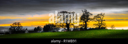 Panorama of tree silhouettes on the edge of a field against an evening sky on the Tyntesfield Estate - Stock Photo