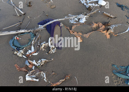 Waste on a beach , Northern Quebec - Stock Photo