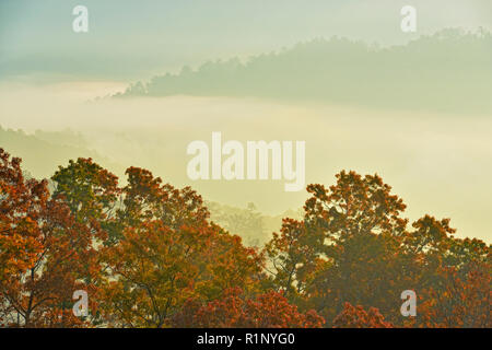 Autumn trees and morning mists in the valley, from the Foothills Parkway, Great Smoky Mountains National Park, Tennessee, USA - Stock Photo