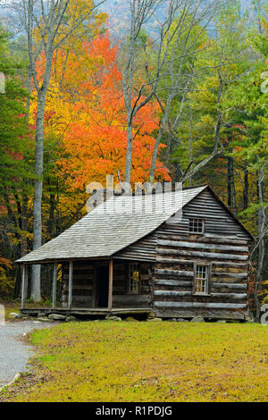 The Carter Shields Cabin in Cades Cove in autumn, Great Smoky Mountains National Park, Tennessee, USA - Stock Photo